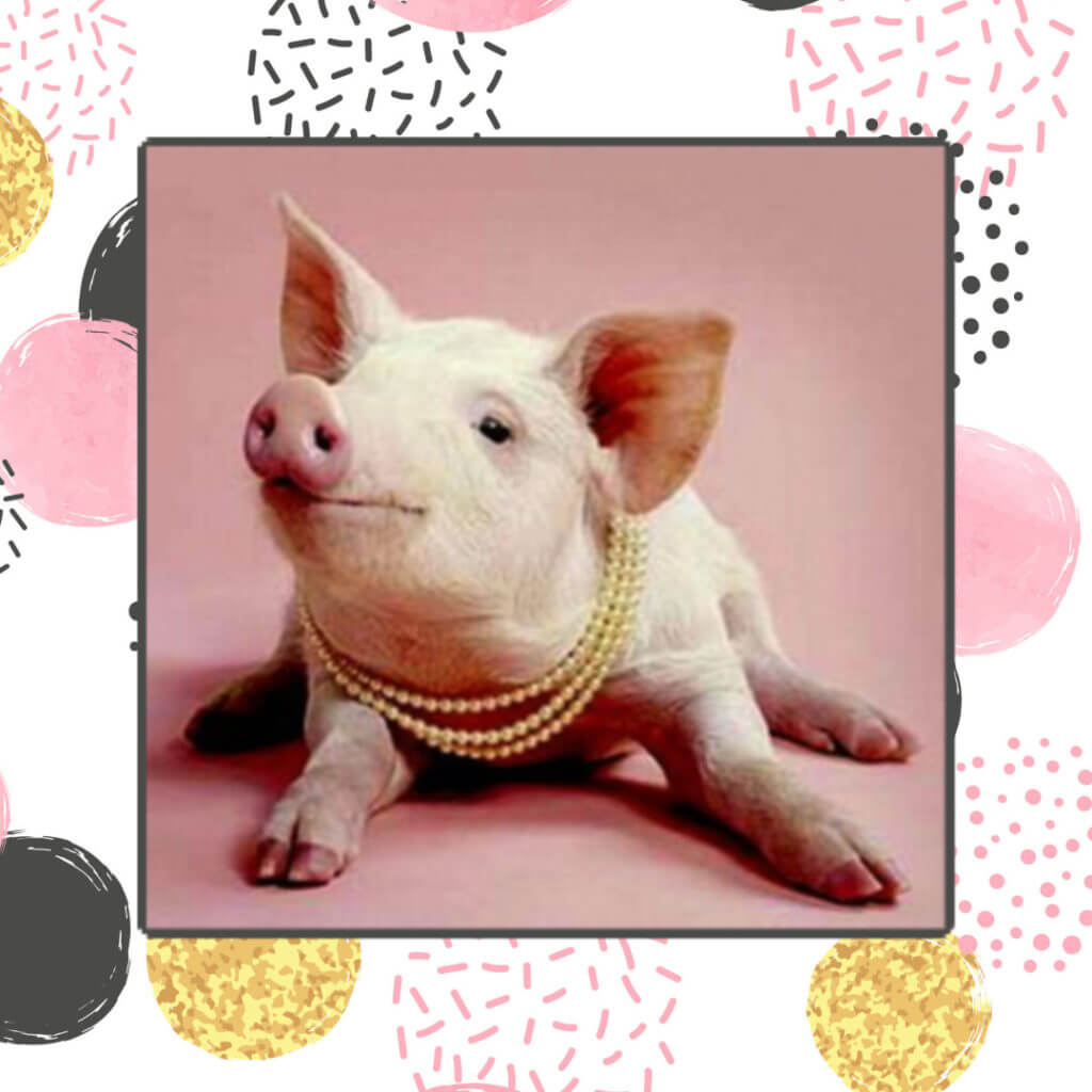 My-heart-His-Words-with-Satin-Pelfrey_pig-pearls-blog